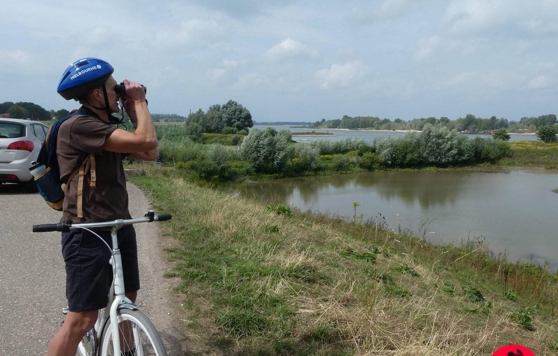 Birding near Nijmegen