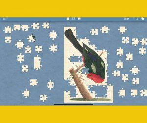 NLA bird jigsaw